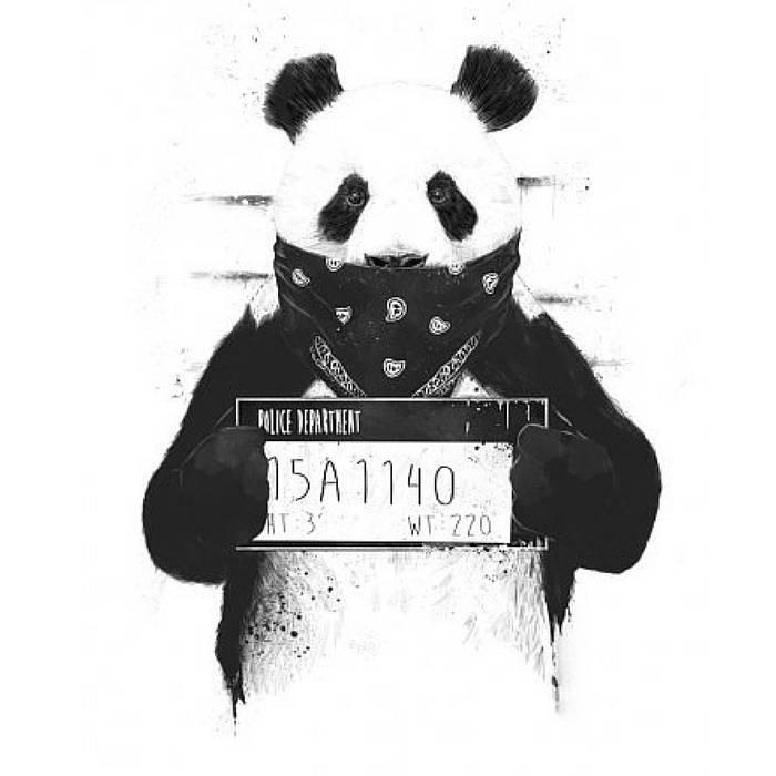 Desiigner - Panda Cover / Desiigner - Panda Remix Ft. Jay Carteré